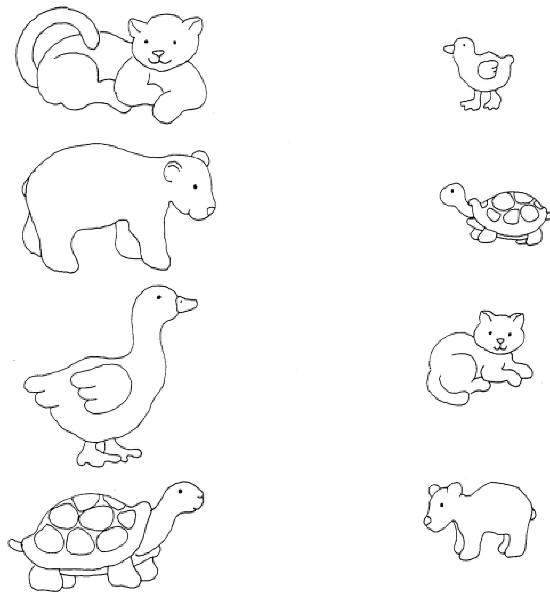 ... 31, can you match the mother animals with the baby animals below